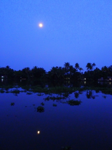backwaters do kerala lua