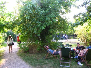 Orchard tea garden