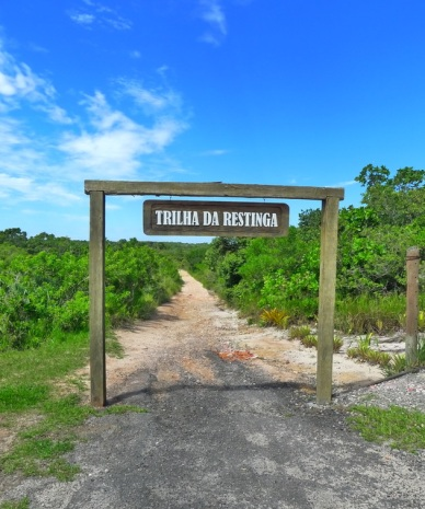 Trilha da restinga Parque Estadual Paulo César Vinha