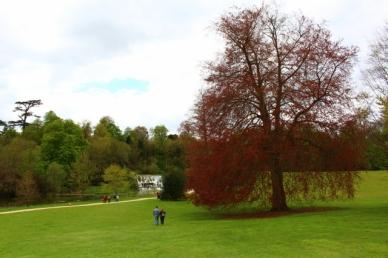 Blenheim palace park Palácio de Blenheim